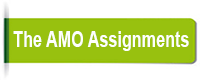 The-AMO-Assignments